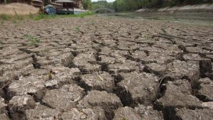 drought needs environmental leadership