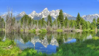climate change impact on daily life in Grand Teton N.P.